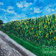 By An Indiana Cornfield The Road Home Art Print