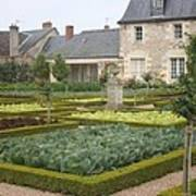 Cabbage Garden  Chateau Villandry Art Print