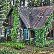 Cabin At Cooks Station Art Print