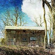 Cabin Fever Art Print