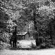 Cabin In The Woods  Art Print by Kim Galluzzo Wozniak