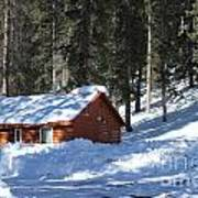 Cabin On Grand Mesa Co Art Print