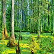 Cache River Swamp Art Print