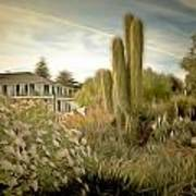 Monterey California Cactus Garden Art Print