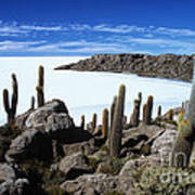 Cactus Forest And Salar De Uyuni Art Print