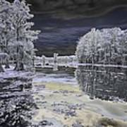 Caddo Lake II Art Print