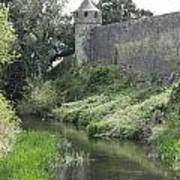 Cahir Castle Wall And River Suir Art Print