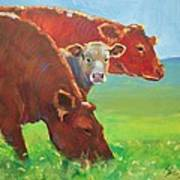 Calf And Cows Painting Art Print