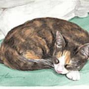 Calico Cat Sleeping Watercolor Portrait Art Print