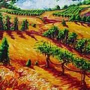 California Chardonnay Art Print