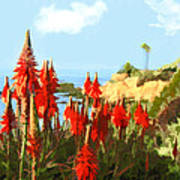 California Coastline With Red Hot Poker Plants Art Print
