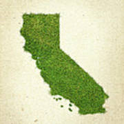 California Grass Map Print by Aged Pixel