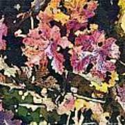 California Vineyard Series Fall Grape Leaves Art Print by Artist and Photographer Laura Wrede