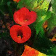 Calla Lilies Photo Art 03 Art Print by Thomas Woolworth