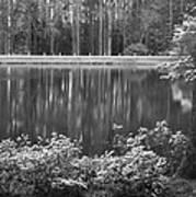 Callaway Garden Reflection Pond Art Print