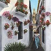 Calleje De Las Flores Cordoba Spain Art Print