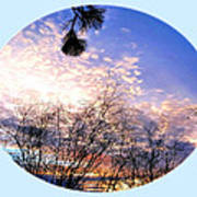 Calm December Sunset Art Print