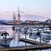 Calm In The Harbour Art Print by Jenny Hudson