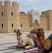 Camels Tunis Art Print