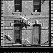 Cameron House 2b Art Print