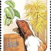 Cameroon Stamp Art Print