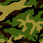 Camouflage Military Tribute Art Print