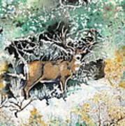Camouflaged Mule Deer Buck In Winter Art Print
