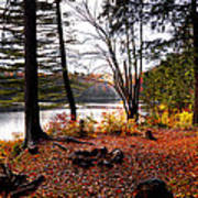 Campsite On Cary Lake Art Print