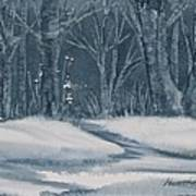 Canadian Backyard Art Print