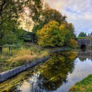 Canal Drifting Leaves Art Print