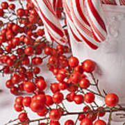 Candy Canes And Red Berries Art Print