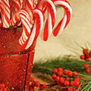 Candycanes With Berries And Pine Art Print