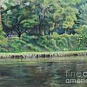Cane River Art Print