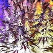 Canna Dusk 4 Art Print
