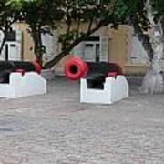 Cannons Art Print
