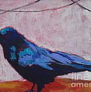 Canyon Crow Art Print