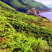 Cape Breton Highlands National Park Art Print