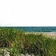 Cape Cod Dunes Art Print
