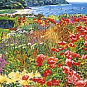 Cape Cod Ocean Garden Art Print