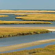 Cape Cod Wetlands Art Print