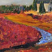 Cape Cranberry Bog In Season Art Print
