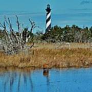 Cape Hatteras Lighthouse Deer In Pond 1 3/01 Art Print