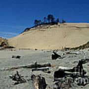 Cape Kiwanda Sand Dune Art Print