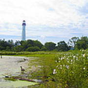 Cape May Lighthouse - New Jersey Art Print