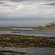 Cape Porpoise Maine - Fog On The Horizon Art Print