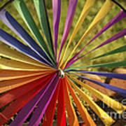 Capture The Wind Art Print