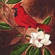 Cardinal II Art Print