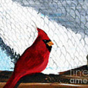 Cardinal In The Dogpound Art Print