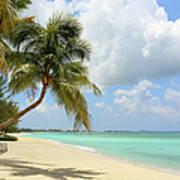 Caribbean Dream Beach Art Print