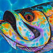 Caribbean Tarpon Fish Art Print
